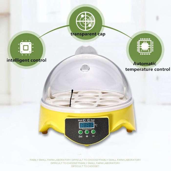 incubadora pequeña 7 huevos digital