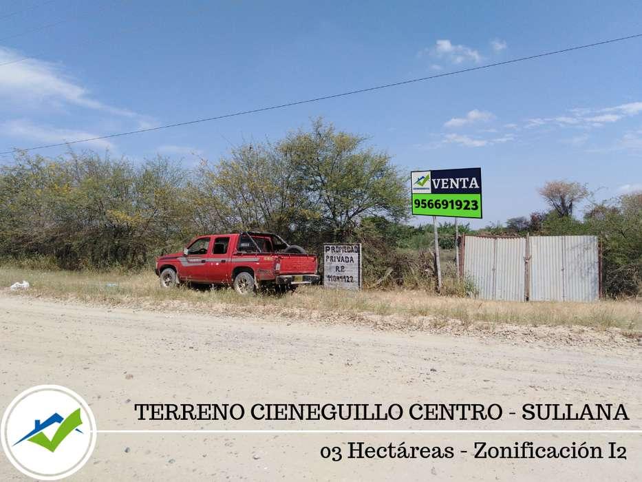 TERRENO 03 HECTAREAS CIENEGUILLO CENTRO, SULLANA