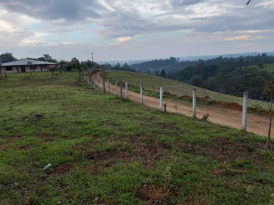 venta terreno are 7.500 mts