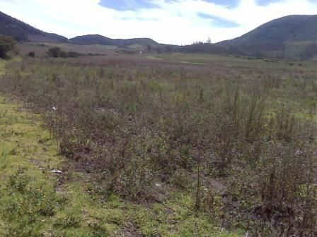 VENDO TERRENO INDUSTRIAL, NORTE DE QUITO 15.000M2