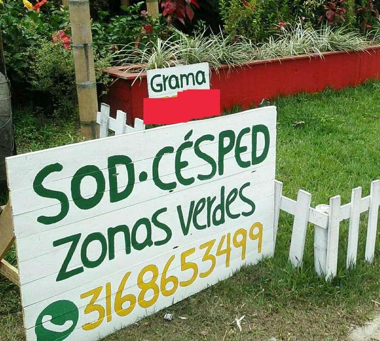 GRAMAS EN PEREIRA