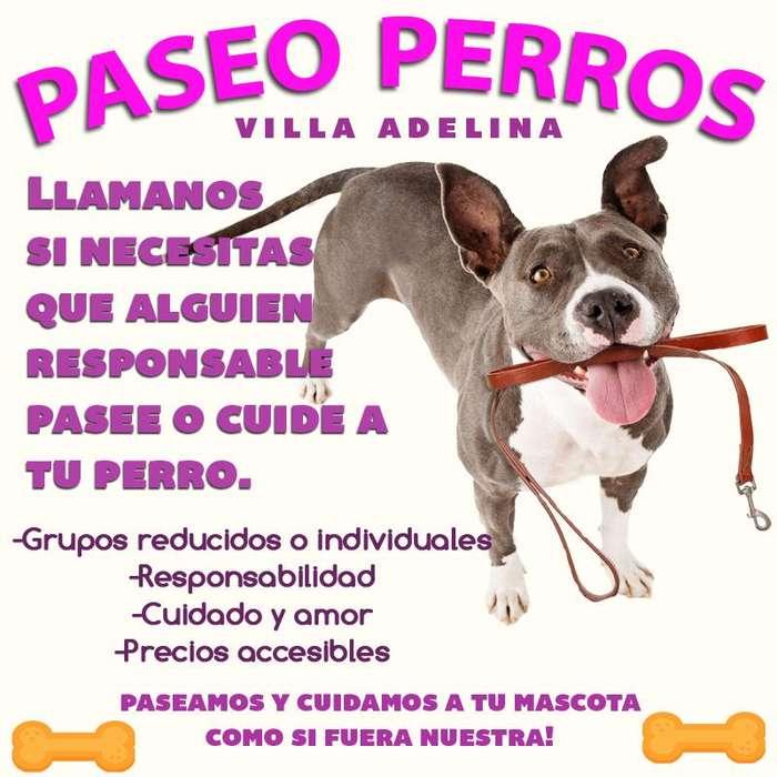 Paseo perros. Villa adelina, San Isidro.