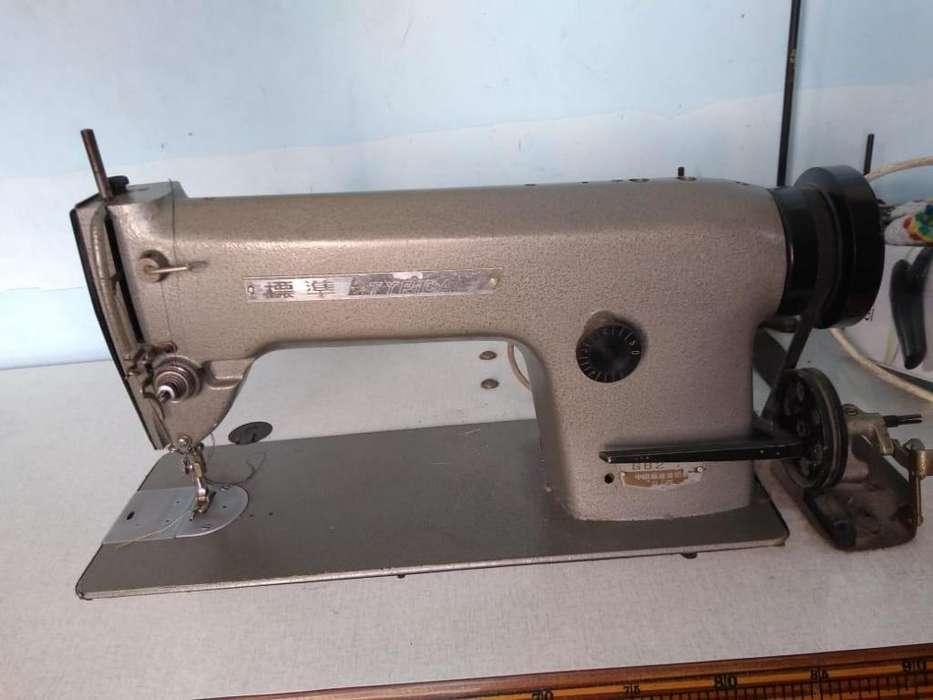 Maquina de coser recta industrial Typical