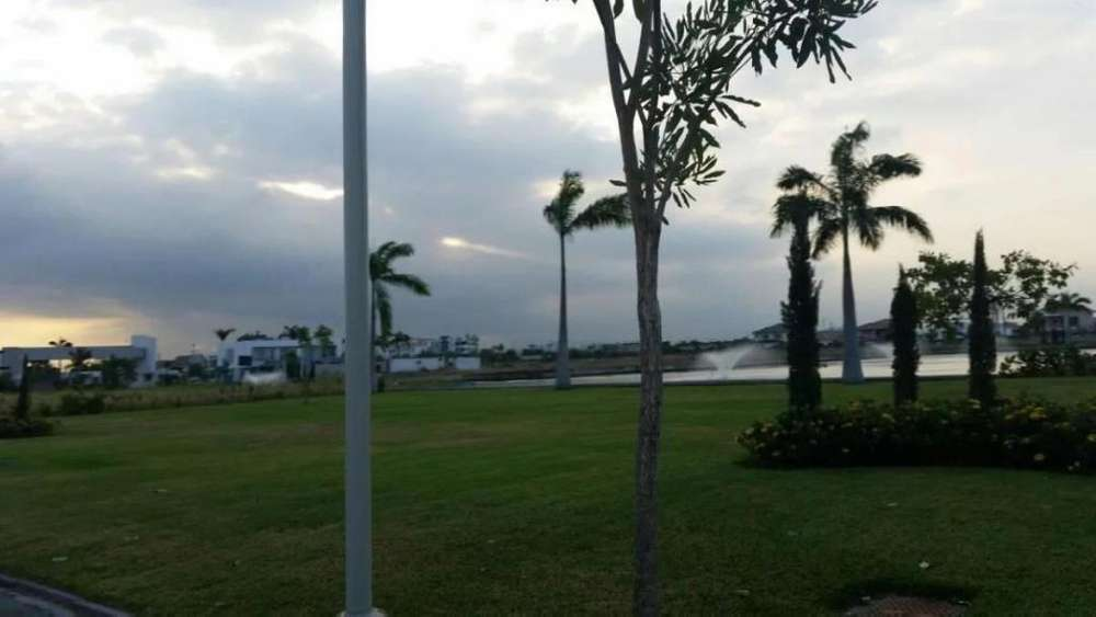 Terreno en Venta en Isla Mocoli, Isola, Samborondon, cerca del C.C Village Plaza.