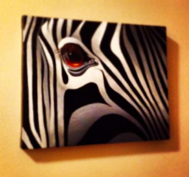 Cuadros de Zebra