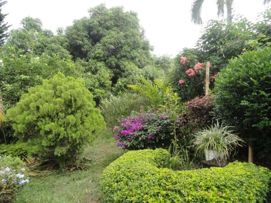 Venta hermosa casa campestre en Rivera Huila