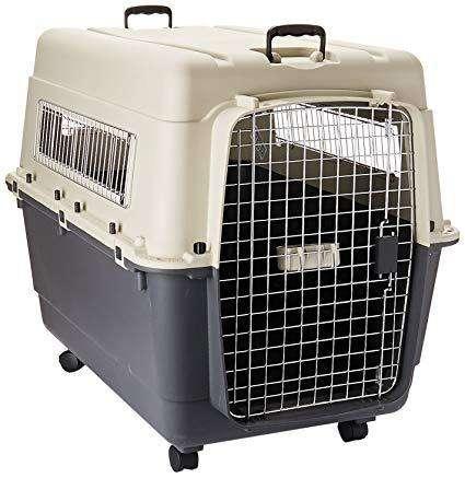 Kennel Transportadores L100 XL Nuevos Para Perros Grandes en Chiclayo Peru