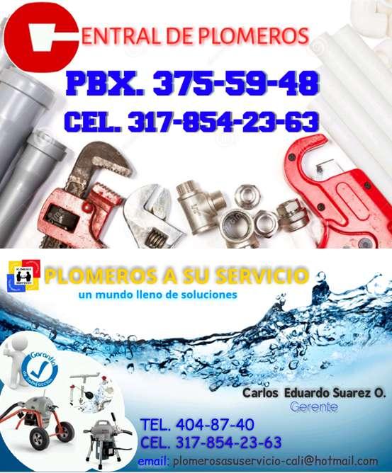 PLOMEROS A SU SERVICIO 3178542363