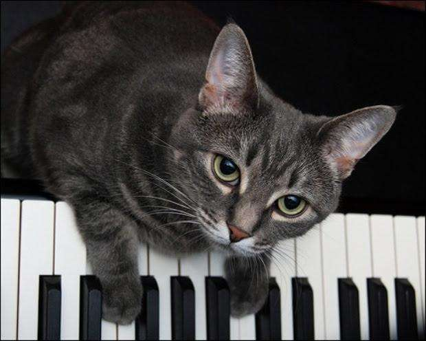 Clases de Música Piano Guitarra Canto A Domicilio