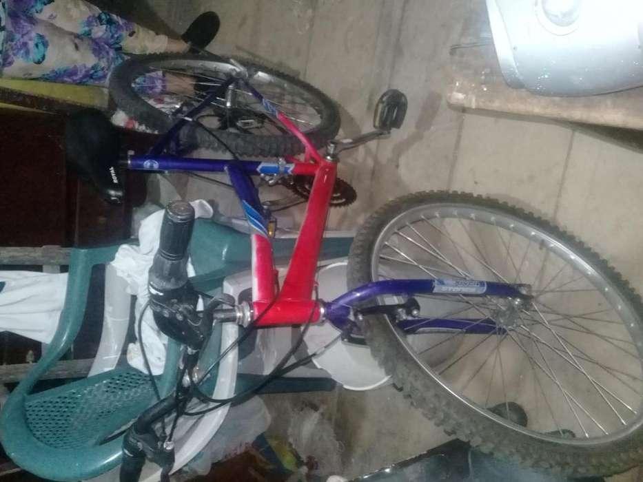 <strong>bicicleta</strong> royal