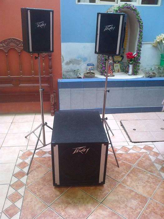 <strong>monitor</strong> peavey