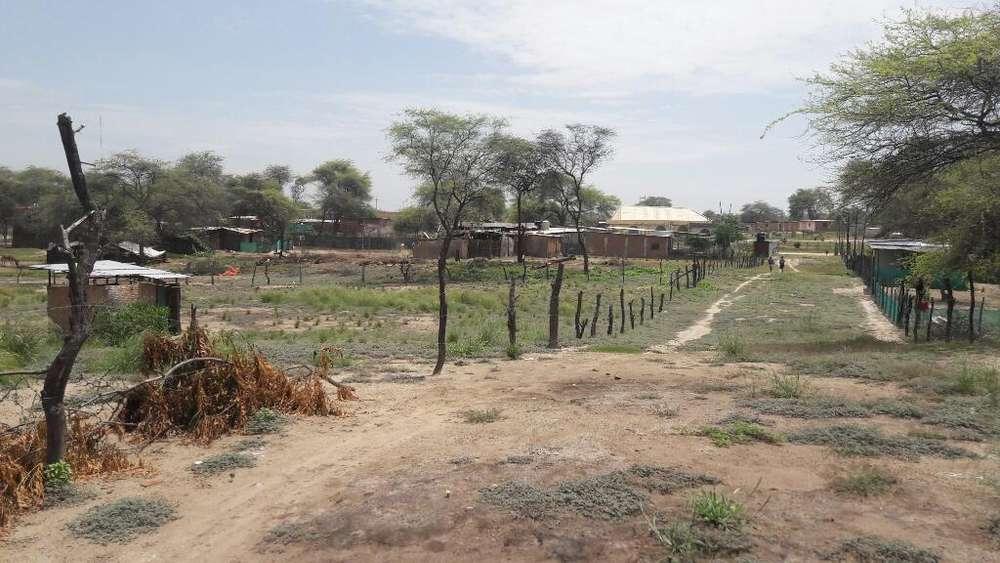 Terreno en Venta 11,500 M2 en Los Ejidos