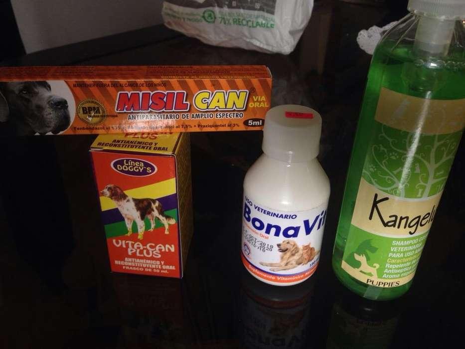 Shampoo Y Vitaminas para <strong>perro</strong>