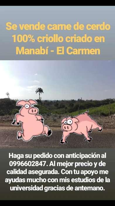 Se vende carne de cerdo criollo