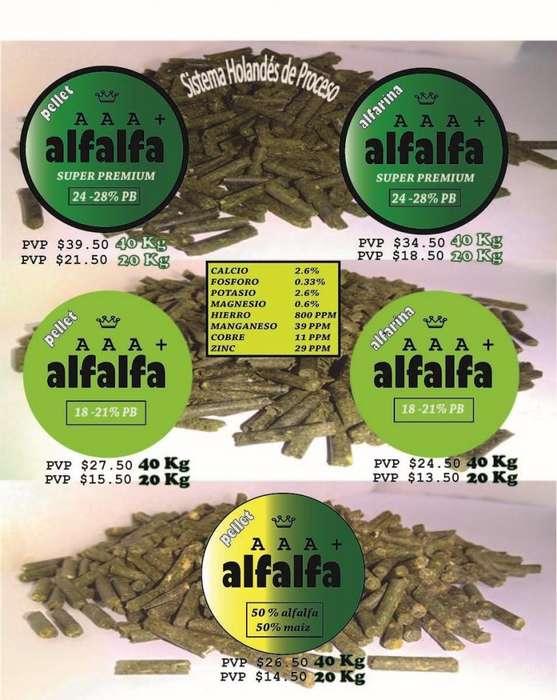 Alfalfa Super Premium (24-28% proteina)