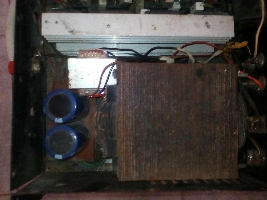 2 Plantas Hechizas de 16 Y 20 Transistor