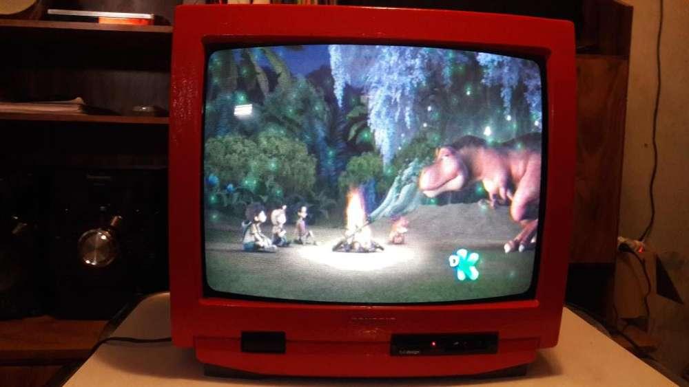 VENDO TV GRUNDIG 20