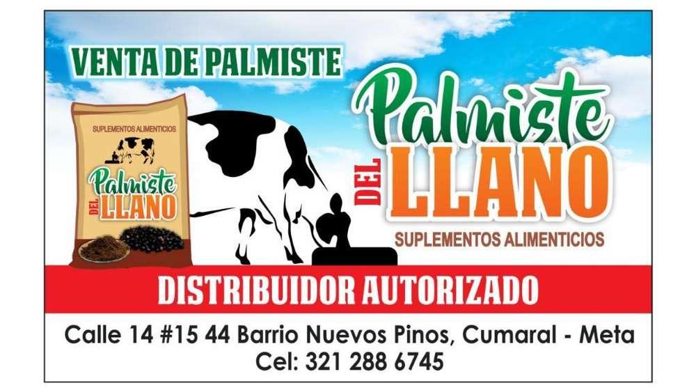 Venta de Palmiste Expeller Y Solvente.