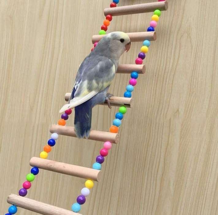 Juguetes para aves
