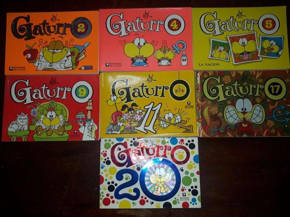 Gaturro (Historietas en Perfecto Estado)