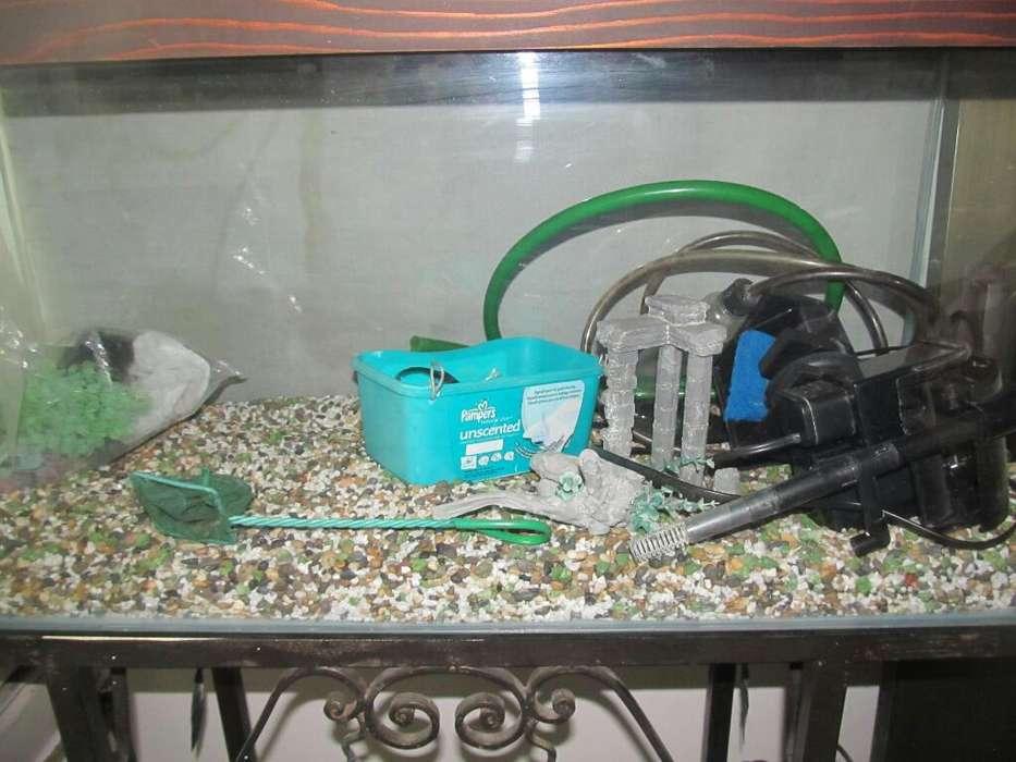 Pescera
