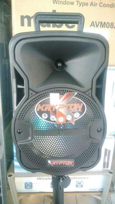 Parlante Amplificado Portatil 8 Pulgadas
