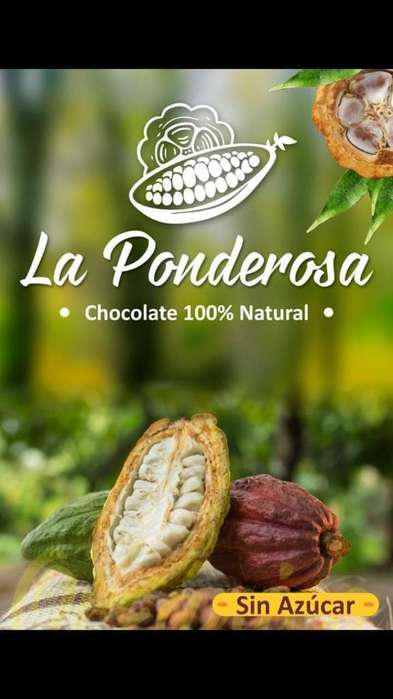 Chocolate La Ponderosa