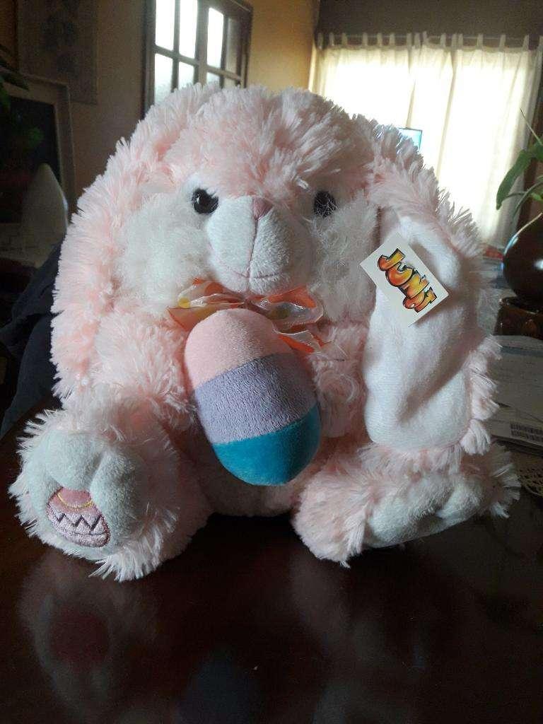 Conejo Junot Nuevo