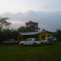 Venta de Terreno de 2 hectáreas con casa pequeña y arboles frutales en Santo Domingo de Tsachilas
