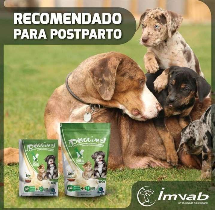 Doggimel Post Parto <strong>mascota</strong>s Suplemento