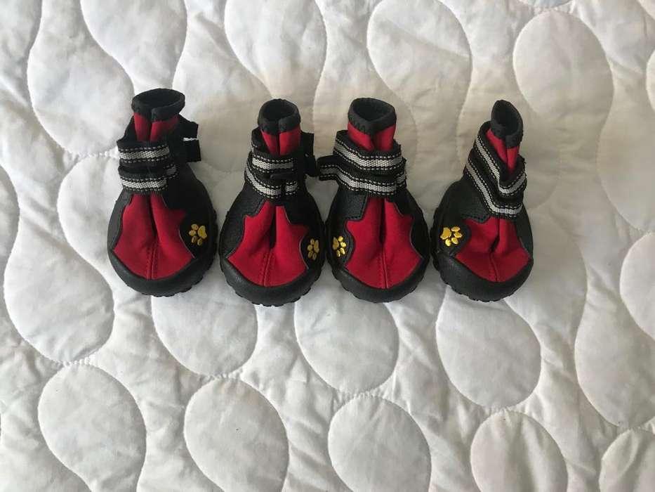 Zapatos nuevos talla 4 perros pequeños, para montaña o ciudad