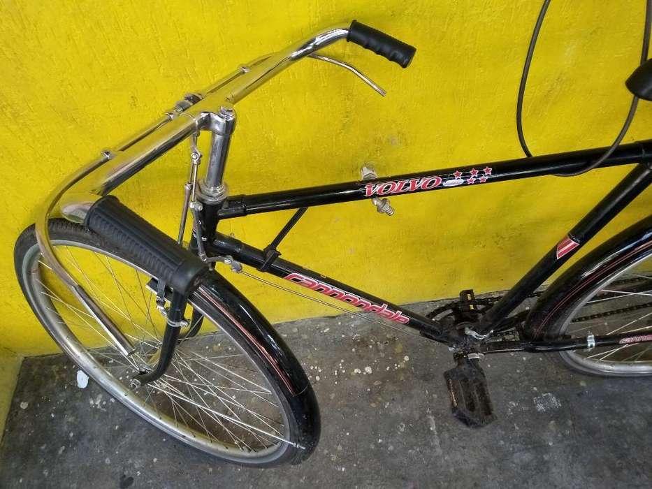 Bicicleta Turismo-nueva