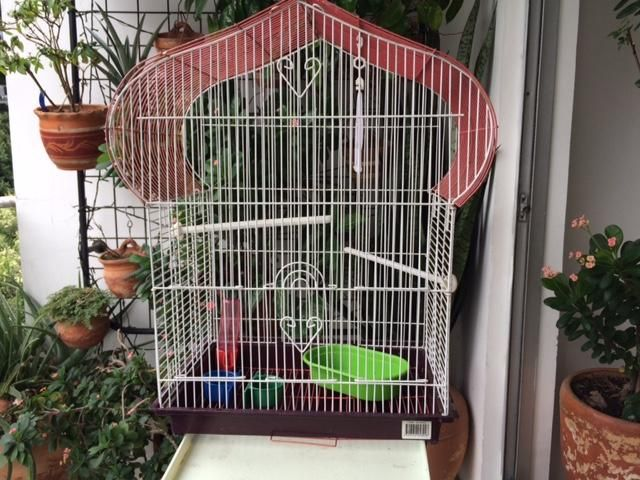 Jaula para Pajaros o Aves pequeñas