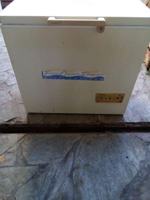 freezer (sin carga gas)