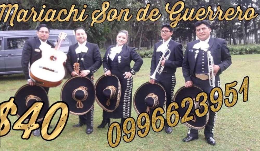 Mariachi Son de Guerrero