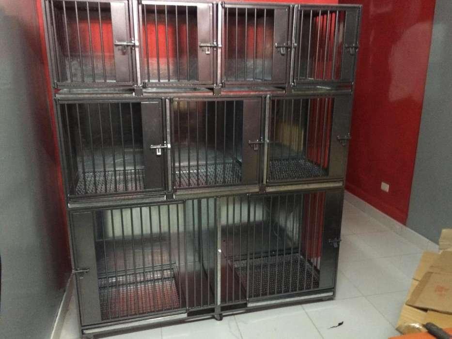 Canil Jaulas de uso veterinario para 9 animales fierro y galvanizado inoxidable