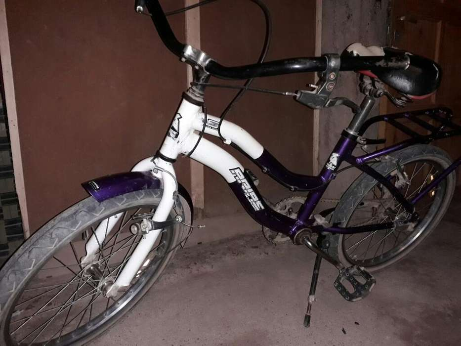 Bicicleta Alumino R20