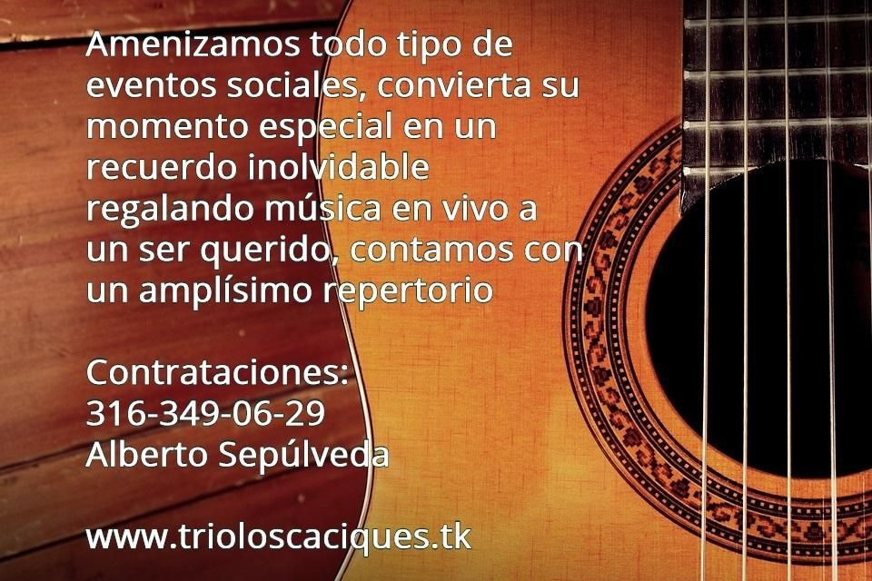 Musica de Cuerda TRIO/DUO Musical