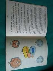 Guia de Trabajos Prácticos de Embriologia . parte 1 segmentacion y gastrulacion