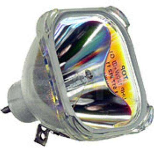 Lamp Proy Optoma Ds306 Ds309 Ds312 Ds315 Bl-fs180b