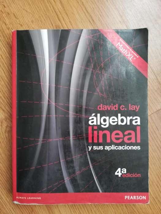 Libro de Texto Álgebra lineal y sus aplicaciones david c. lay Pearson 4 edicion
