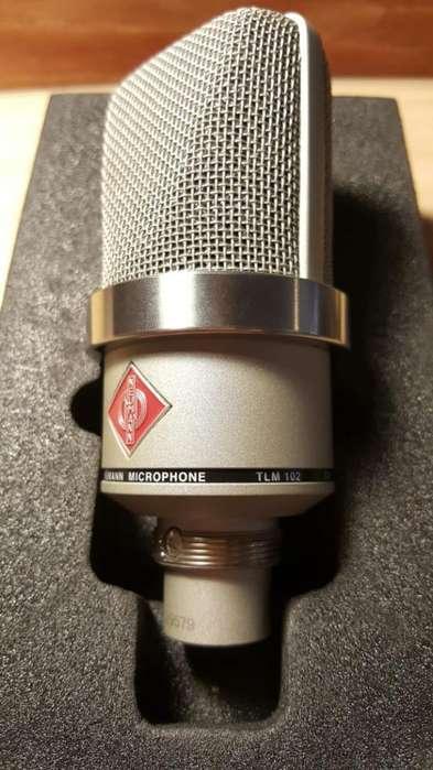 Microfono Condenser Neumann Tlm102.