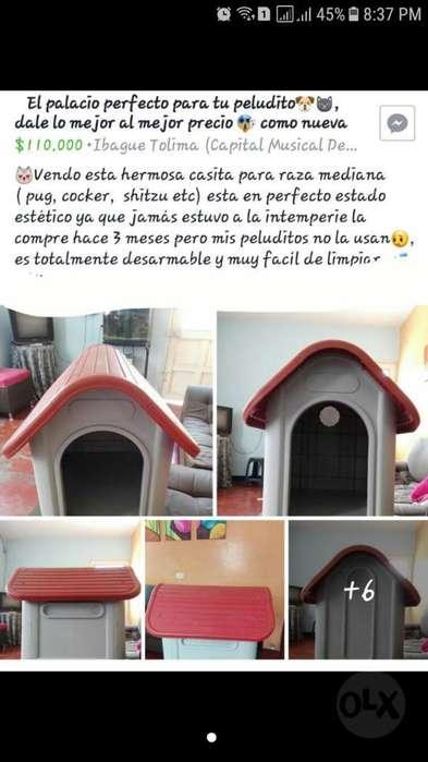 Casa para Perro Raza Mediana