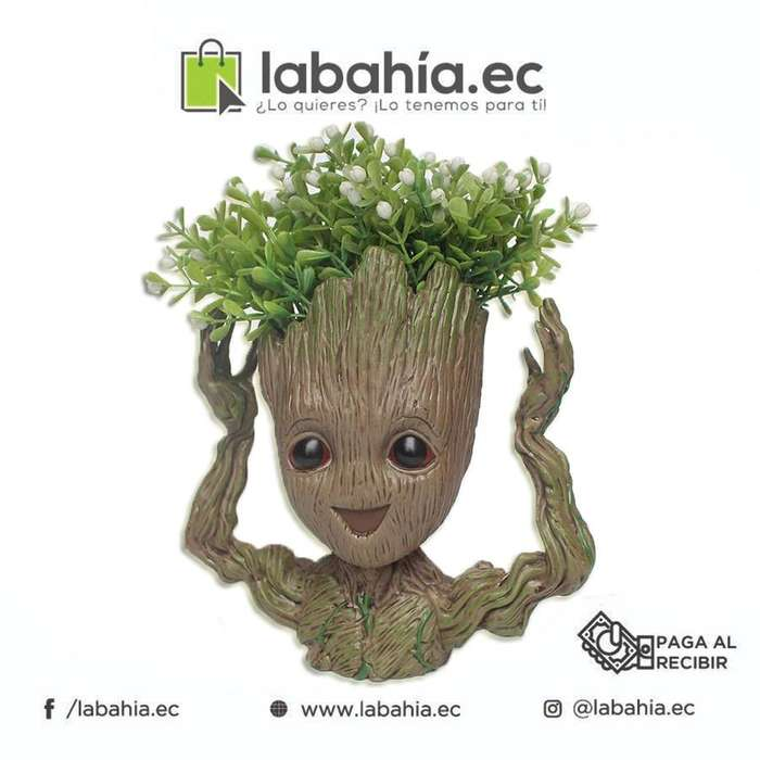 Adorable maseta Baby Groot!