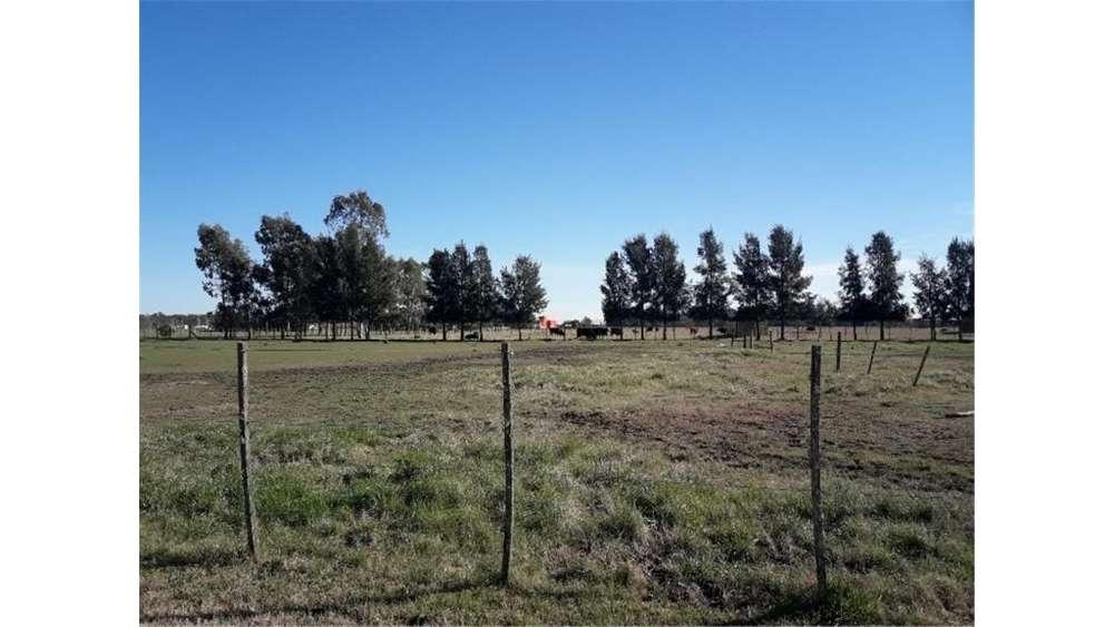 Beltran S/N - UD 43.000 - Terreno en Venta