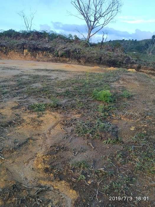 Venta de Lotes en San Vicente ( Ant)