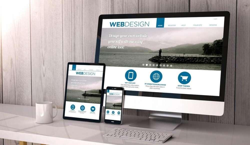 DISEÑADOR WEB VIVA EN MEDELLIN FREE LANCE