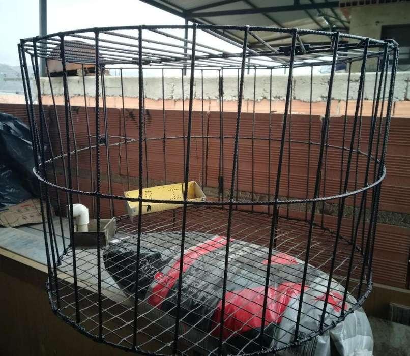 Jaulas para Animales Conejos 3203163834