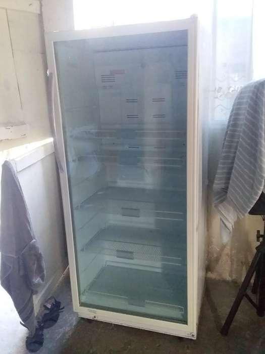Vitrina <strong>refrigerador</strong>