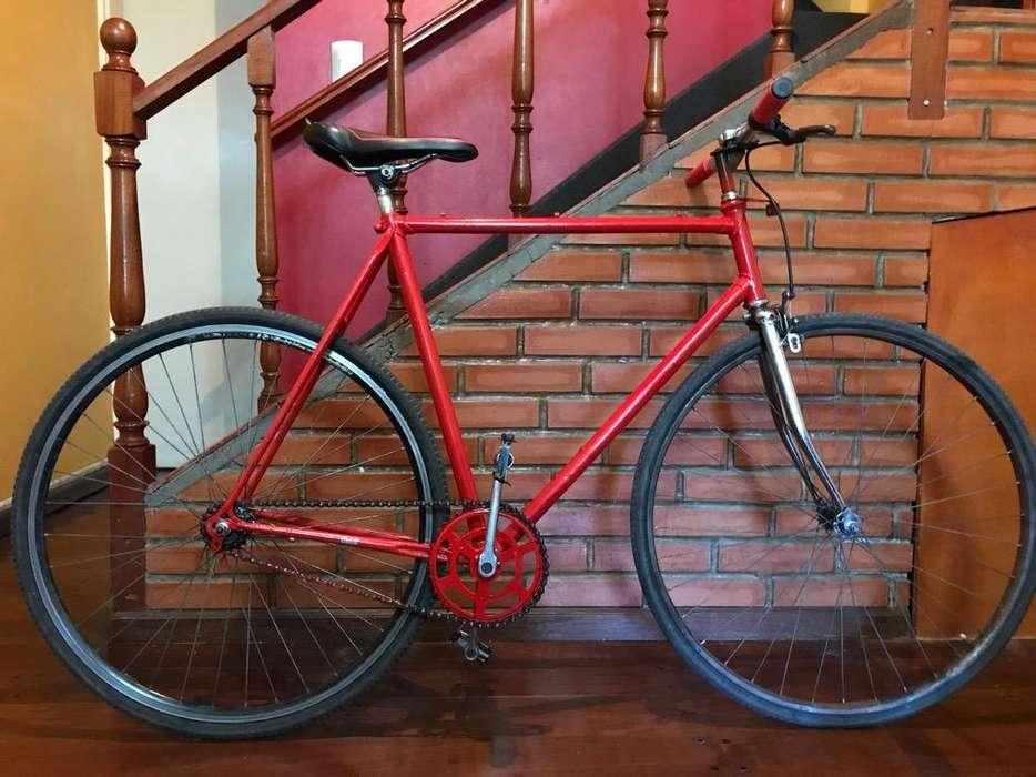 Bicicleta Fixie , Media Carrera Linga